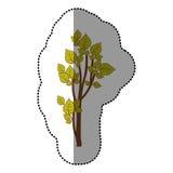 icône stylisée d'arbre de vert de chaux Photos stock