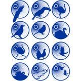 Icônes avec birds-1 Image libre de droits
