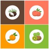 Icônes blanches rondes de fruit sur le fond coloré illustration de vecteur