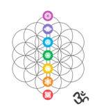 Icônes colorées de chakra sur la conception sacrée de la géométrie Photo stock
