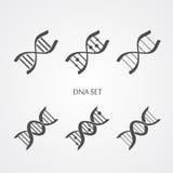 Icônes d'ADN réglées Image stock