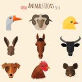 Icônes d'animaux de ferme avec la conception plate Photos libres de droits