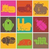 Icônes d'animaux de zoo Photo stock