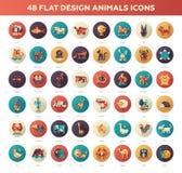 Icônes d'animaux sauvages et domestiques de conception plate réglées Photos libres de droits