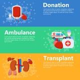 Icônes d'organes internes illustration stock