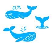 Icônes de baleines Éléments plats de conception Illustration de vecteur Image libre de droits