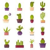 Icônes de cactus d'usine de maison de bande dessinée de vecteur Photographie stock libre de droits