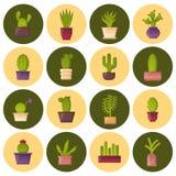 Icônes de cactus d'usine de maison de bande dessinée de vecteur Photos libres de droits