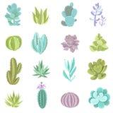 Icônes de cactus réglées Image stock
