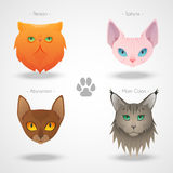 Icônes de Cat Breeds illustration libre de droits