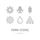 Icônes de ferme réglées Blé Maïs Baisse de l'eau Tournesol Vecteur illustration libre de droits