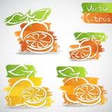 Icônes de fruit Photo libre de droits