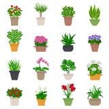 Icônes de plante d'intérieur réglées Image stock