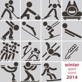 Icônes de sport d'hiver Images stock