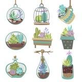 Icônes de Succulents réglées Photos stock