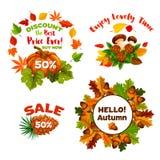 Icônes de vecteur d'achats de remise de vente d'automne réglées illustration libre de droits