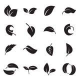 Icônes des feuilles Illustration de vecteur Illustration Stock