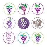 Icônes et Logo Set de raisins Illustration Libre de Droits