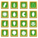Icônes Nuts réglées vertes Photo stock