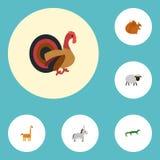 Icônes plates Camelopard, mouton, dindon et d'autres éléments de vecteur Images libres de droits