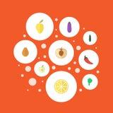 Icônes plates chaux, salade, Jonagold et d'autres éléments de vecteur L'ensemble de Berry Flat Icons Symbols Also inclut des vert Photos libres de droits