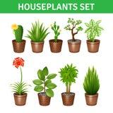Icônes réalistes de plantes d'intérieur réglées Image stock
