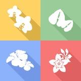 Icônes tropicales de fleurs Photo stock