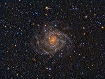 IC342 spiraalvormige Melkweg Royalty-vrije Stock Foto's