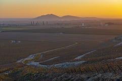 Ica的葡萄园在日落,秘鲁 免版税库存照片