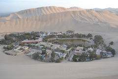 ICA Oasis, Peru Royalty Free Stock Photos