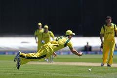 ICC冠军战利品准备比赛印度v澳大利亚 免版税库存图片