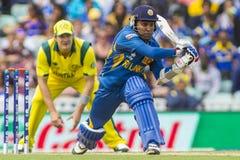 ICC冠军战利品斯里兰卡和澳大利亚 库存照片