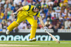 ICC Champions Trophy Sri Lanka and Australia Royalty Free Stock Image