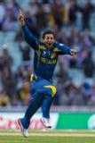 ICC mästaretrofé Sri Lanka och Australien Arkivfoto