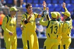 ICC mistrza trofeum Grże Up Zapałczanego India v Australia Zdjęcie Royalty Free