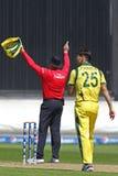 ICC mistrza trofeum Grże Up Zapałczanego India v Australia Zdjęcia Stock