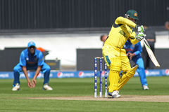ICC mistrza trofeum Grże Up Zapałczanego India v Australia Fotografia Royalty Free