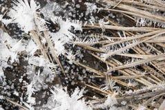 Ice. Frozen flow field in winter Royalty Free Stock Image