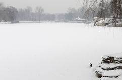 Ice湖 库存照片