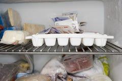 On ice. Cash hidden in the freezer Stock Image