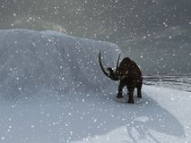 Ice age mammoth. Woolly ice age mammoth in blizzard Royalty Free Stock Images