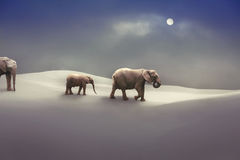 Ice Age. Three elephants are migrating, an impressionistic view stock images