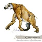 Ice Age wildlife. prehistoric period fauna. Chalicotherium. Hand drawn watercolor animal vector illustration