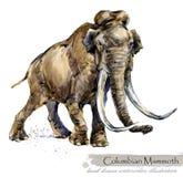 Ice Age wildlife. prehistoric period fauna. Columbian mammoth. Watercolor hand drawn animal stock illustration