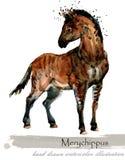 Ice Age wildlife. prehistoric period fauna. Merychippus. Watercolor hand drawn animal vector illustration