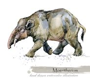 Ice Age wildlife. prehistoric period fauna. Moeritherium. Hand drawn watercolor animal royalty free illustration