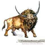 Ice Age wildlife. prehistoric period fauna. Pantherion. Bison Latifrons. Watercolor hand drawn animal royalty free illustration