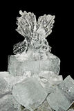 Ice angel Stock Images