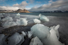 Ice on the Arctic beach - landscape Royalty Free Stock Photos