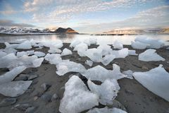 Ice on the Arctic beach - Spitsbergen, Svalbard Royalty Free Stock Photos